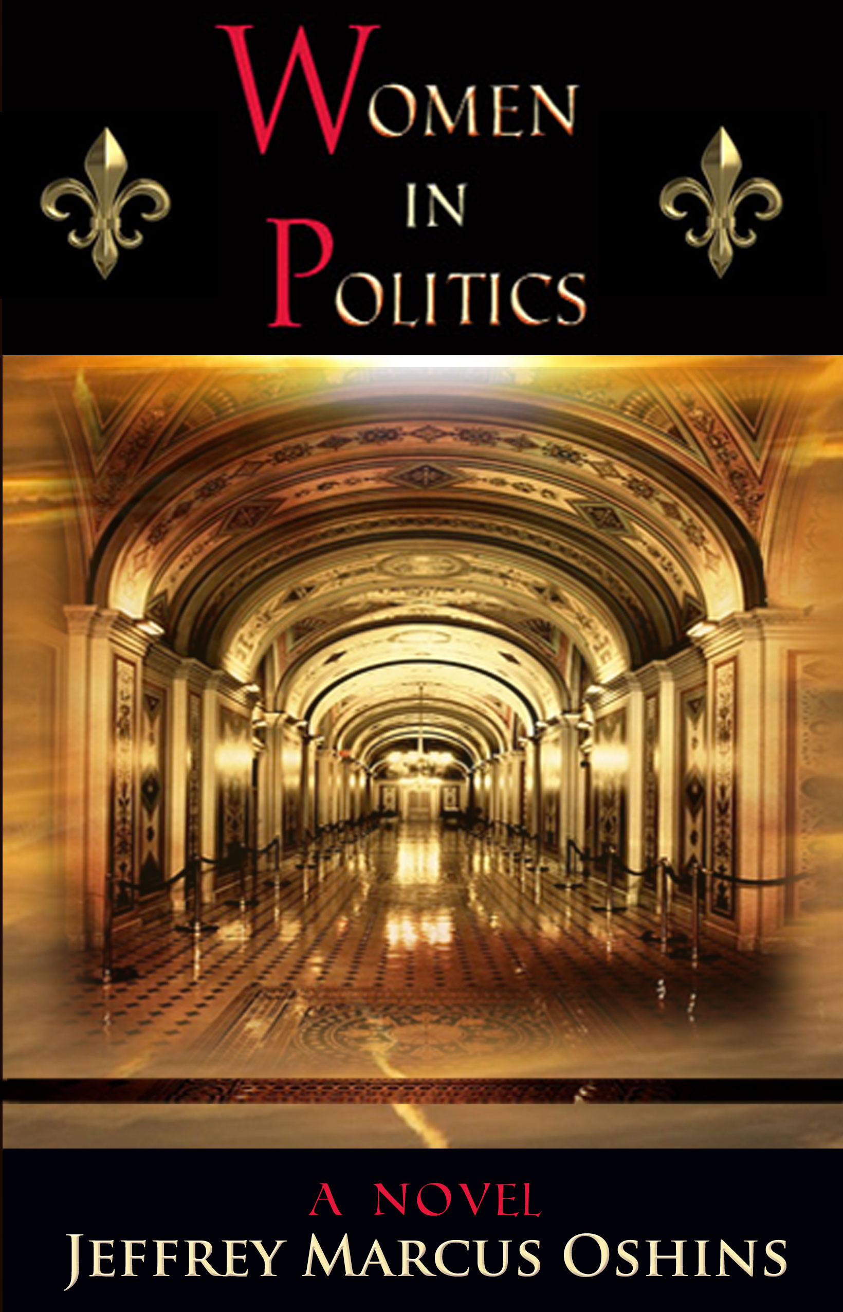 Women in Politics a Novel front cover